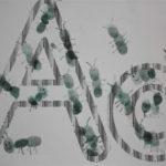 Letter Aa Activities