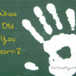 Guest Post:  What Did You Learn from Week 2?