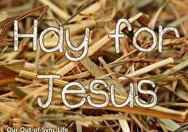hay for Jesus